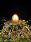 Het Gouden ei naar India